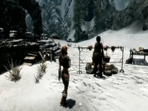 Skyrim Test Video free
