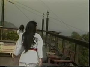 Karate Girls (1986) free