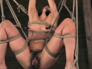 Suspended spreadeagle subs hairy clit stimulated