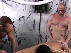 The three muscle numbers involved are sex maniacs in their