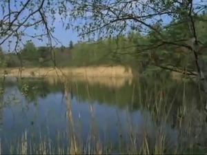 Madchen ohne manner (1980)